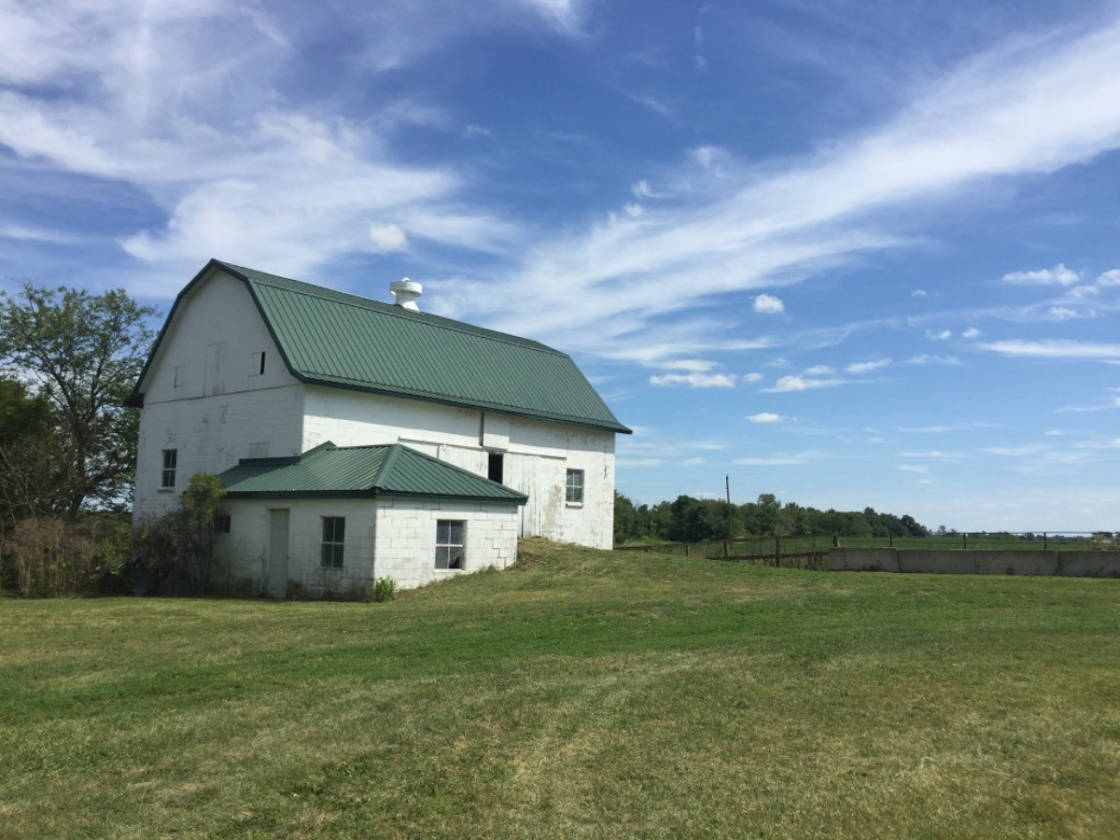 Home and outbuildings with tillable acres, in prime ...