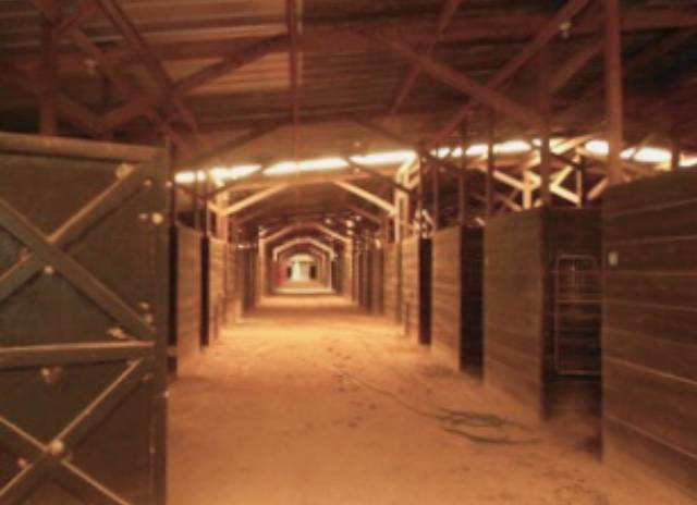 Equestrian Center Multi Disipline And Established Aiken