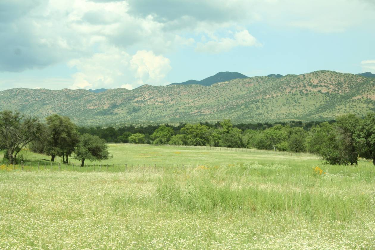 Spectacular Mission Oaks Ranch Sonoita Az Sierra Vista