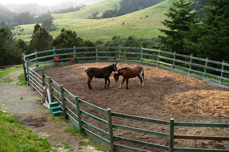 Horse Properties For Sale Sonoma County Ca