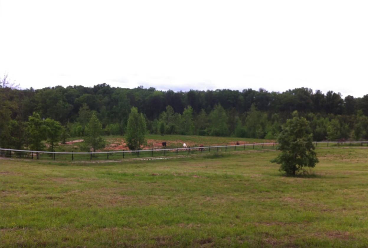 Equestrian Estate 41 Acres 30 Minutes From Rock Hill Sc