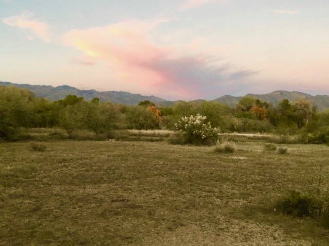 Luxury 10 Acre Equestrian Ranch Parcel In Tucson S Tanque